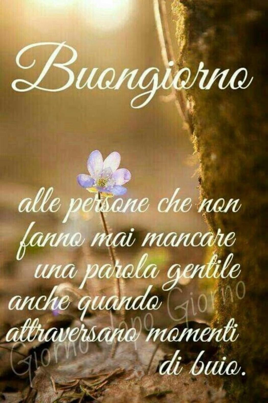 Belle Immagini Buongiorno Con Frasi 15 Fotowhatsapp It