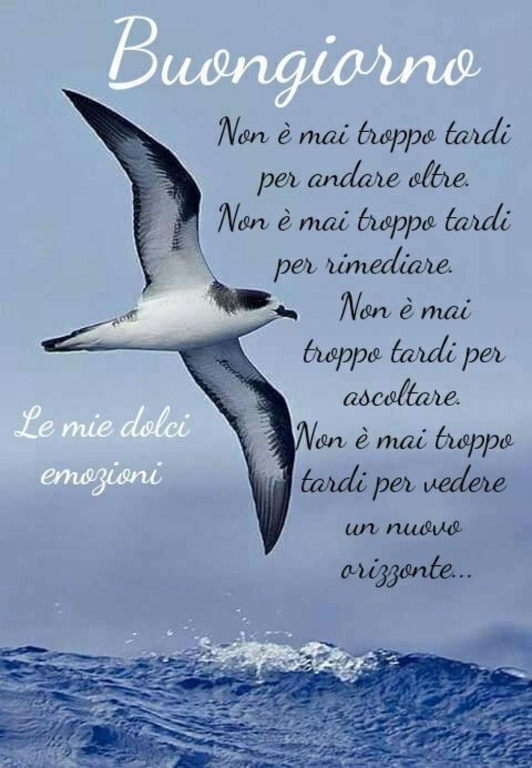 Belle Immagini Buongiorno Con Frasi 5 Fotowhatsapp It
