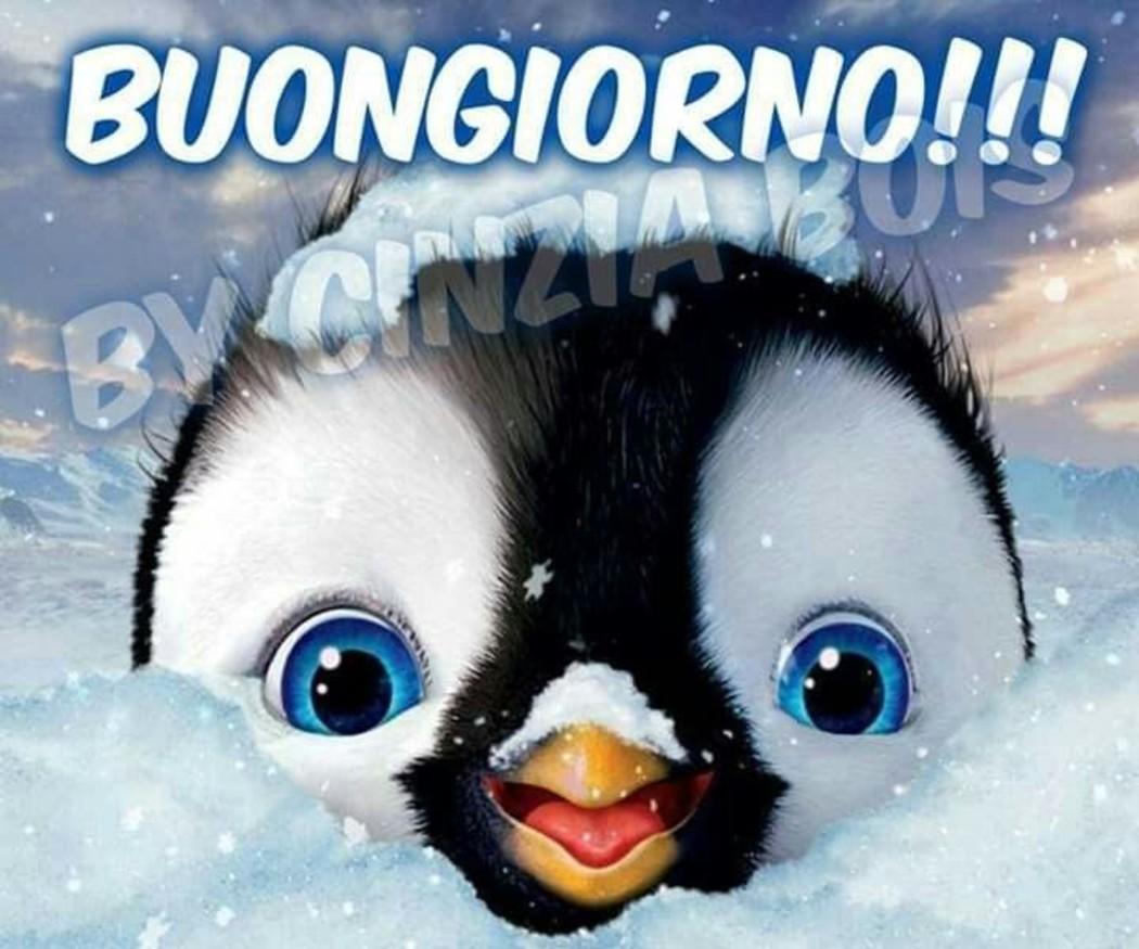 Foto Buongiorno Con La Neve.Immagini Buongiorno Con La Neve Fotowhatsapp It