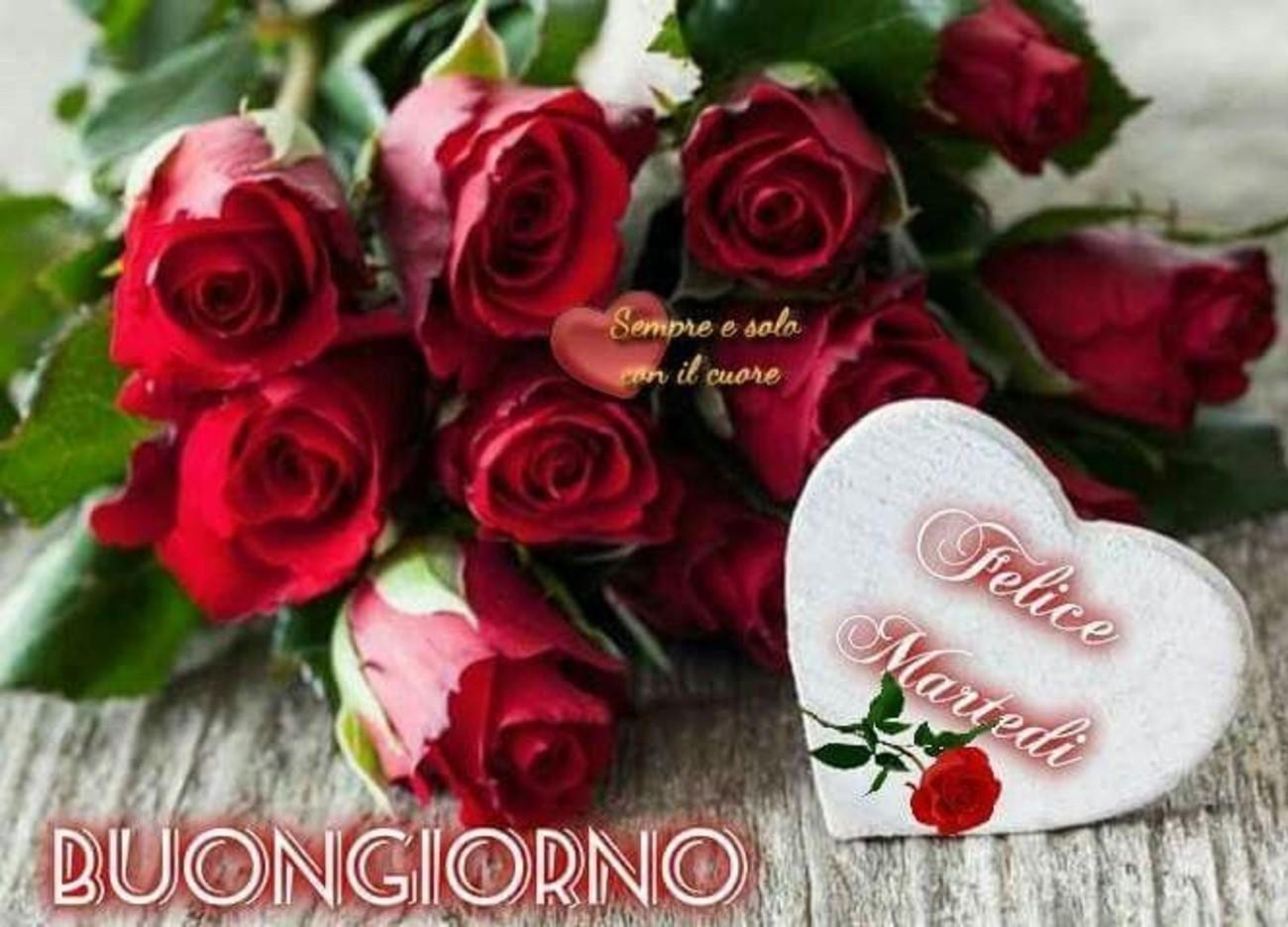 belle immagini buon martedi amore con rose (5)