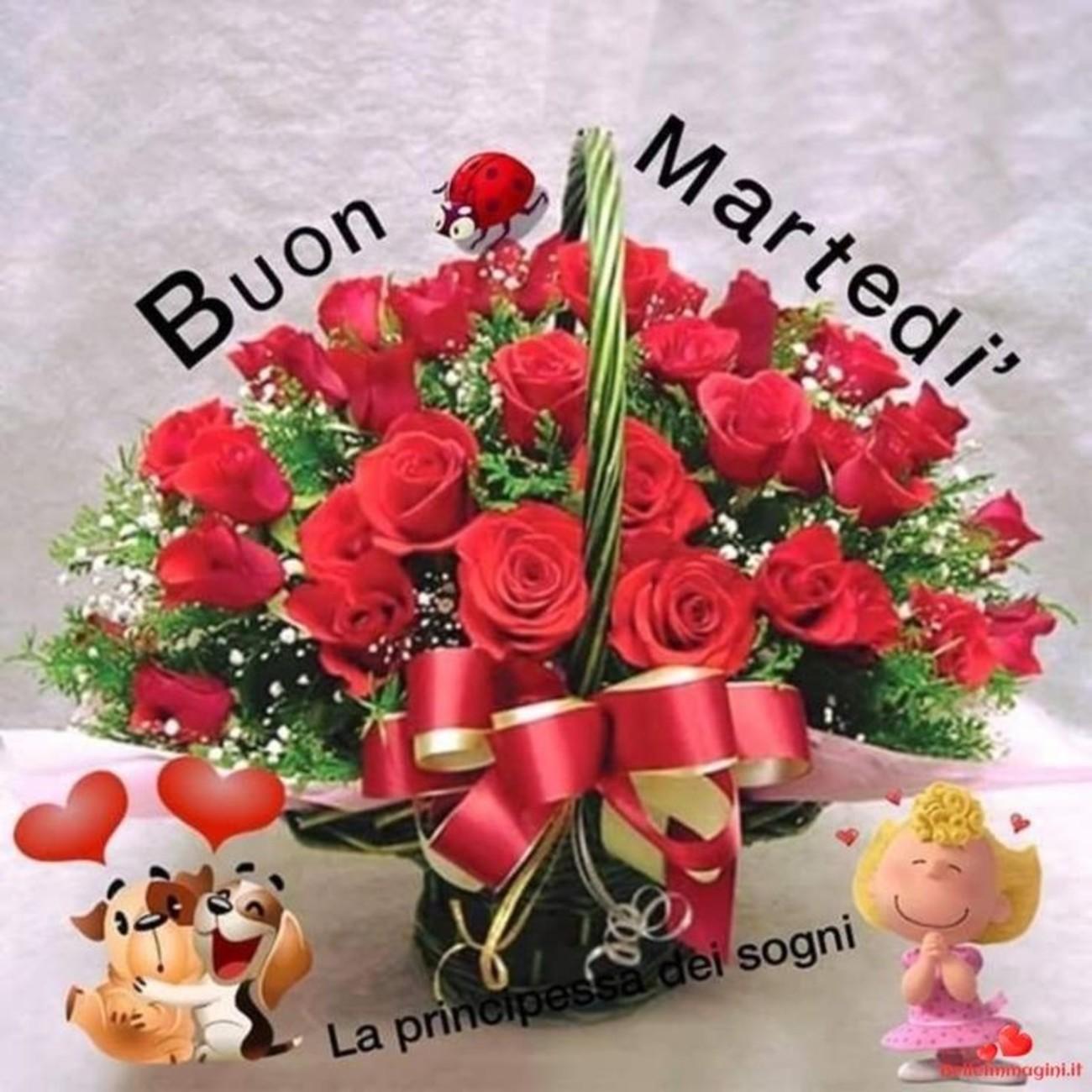 belle immagini buon martedi amore con rose (6)