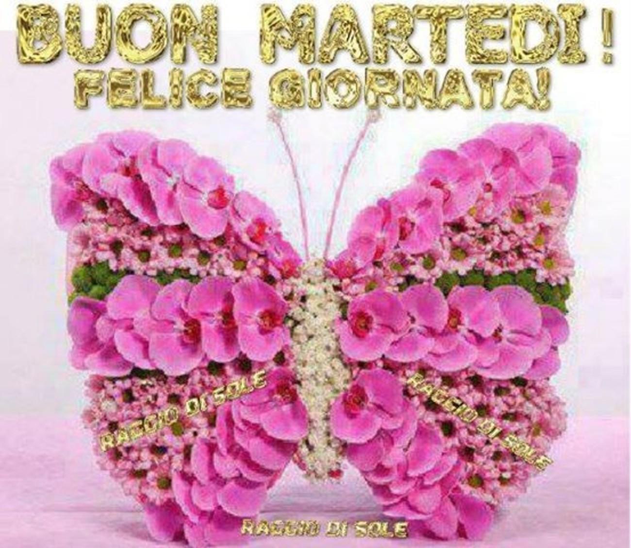 Bellissime Immagini Buona Martedi Con Farfalle E Fiori