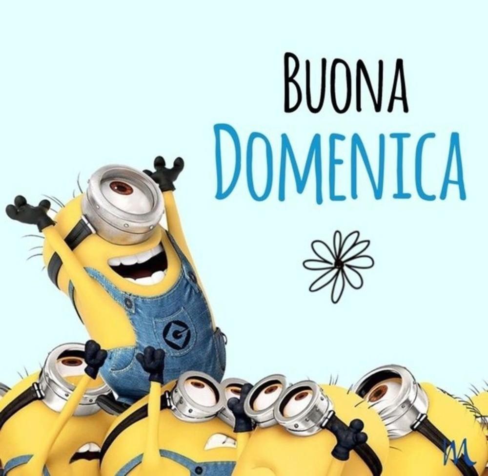 Belle Immaigni Buona Domenica Minions Fotowhatsapp It