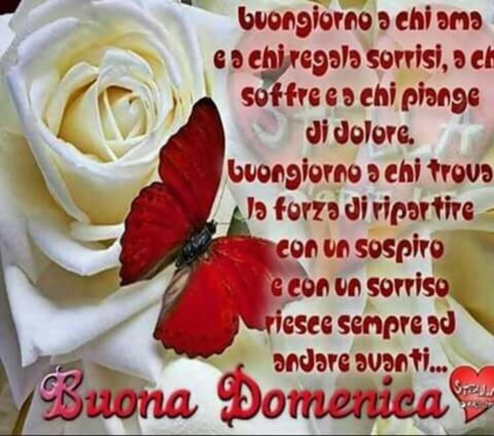 Cuore D Amore E Di Amicizia Archives Fotowhatsapp It